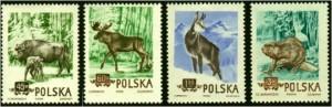 PL-1954-zwierzeta