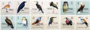 PL-1960-Ptaki-chronione-polsce