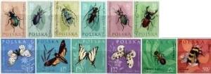PL-1961-owady-chronione-polskie